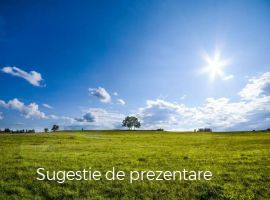 Vanzare  terenuri constructii  3900 mp Hunedoara, Boz  - 15600 EURO