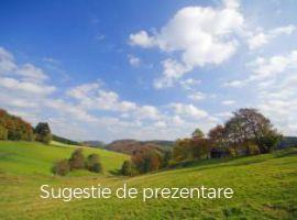 Vanzare  terenuri constructii  5000 mp Satu Mare, Homorodu de Mijloc  - 9000 EURO