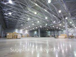 Vanzare  spatii industrial Satu Mare, Doba  - 1650 EURO