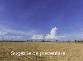 Vanzare  terenuri agricol  424 mp Giurgiu, Ulmi  - 9000 EURO