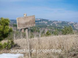 Vanzare  terenuri agricol Hunedoara, Calanu Mic  - 1 EURO