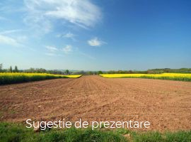 Vanzare  terenuri agricol Gorj, Bolbosi  - 1 EURO