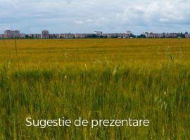 Vanzare  terenuri agricol Satu Mare, Cionchesti  - 5550 EURO