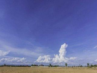 Vanzare  terenuri agricol  8700 mp Calarasi, Solacolu  - 26100 EURO