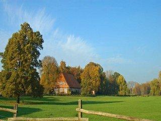 Vanzare  terenuri agricol  1175 mp Prahova, Gageni  - 12925 EURO