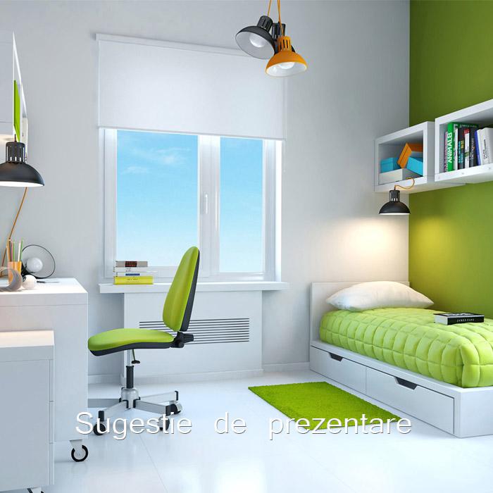 Inchiriere                                              Apartament                                              2 camere                                             Baneasa                                            , Bucuresti